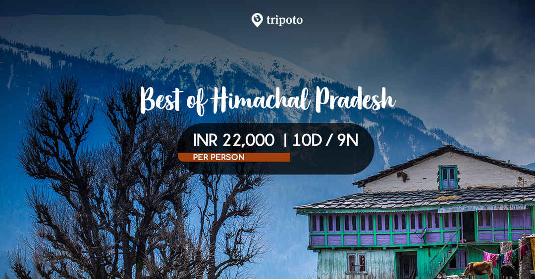 Best of Himachal Pradesh - Tours and Holiday Packages by
