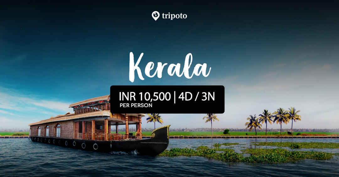 Photo of Enticing Kerala