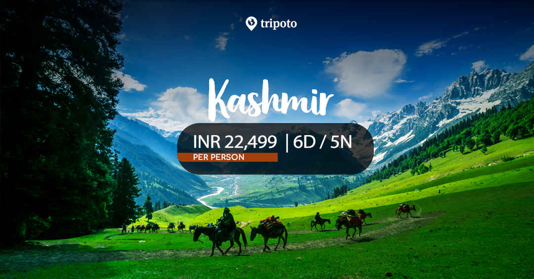 7b512e1e1bff Best-selling tour packages. Photo of Kashmir Family Holiday