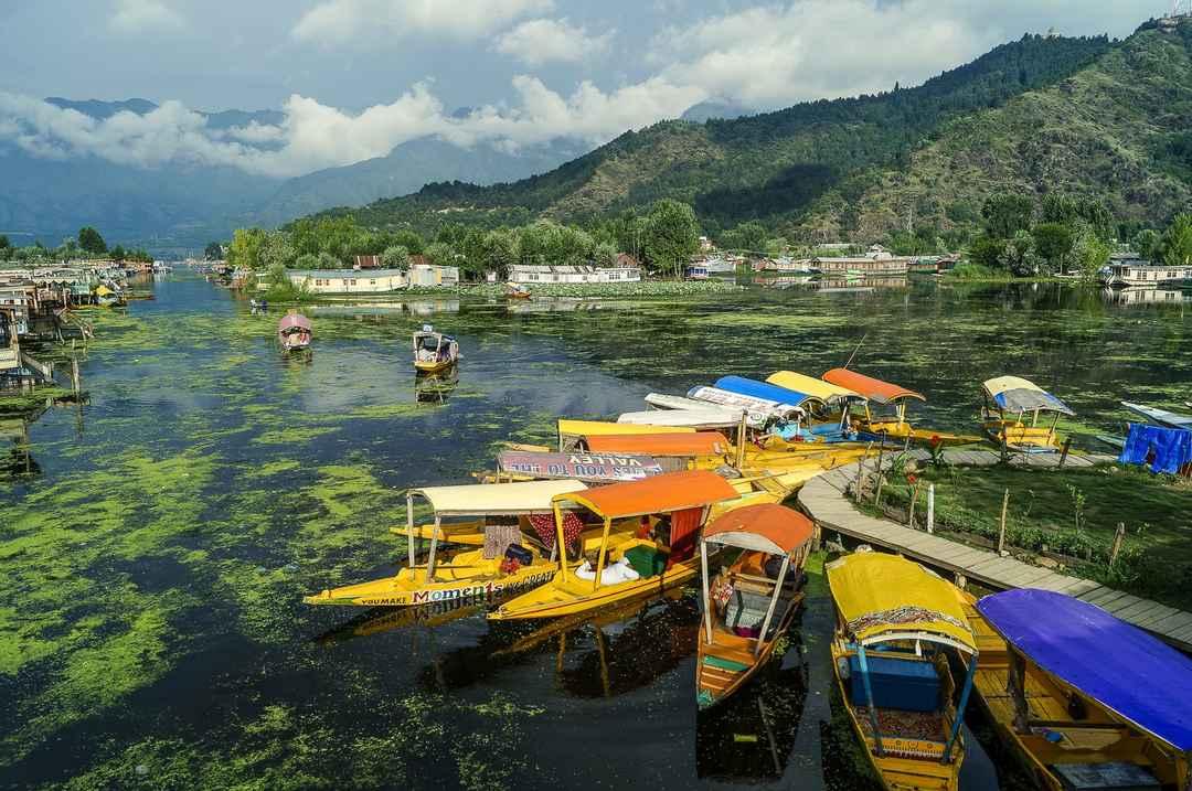 Photo of Romantic Kashmir