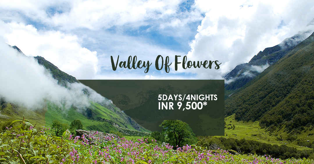 Photo of Valley Of Flowers Trek