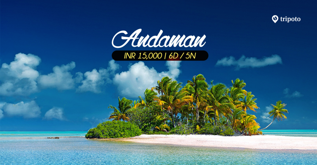 Photo of Andaman Tour Packages