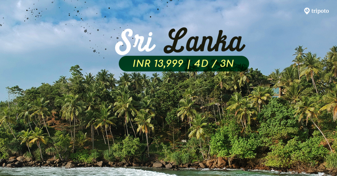 Photo of Discover Srilanka