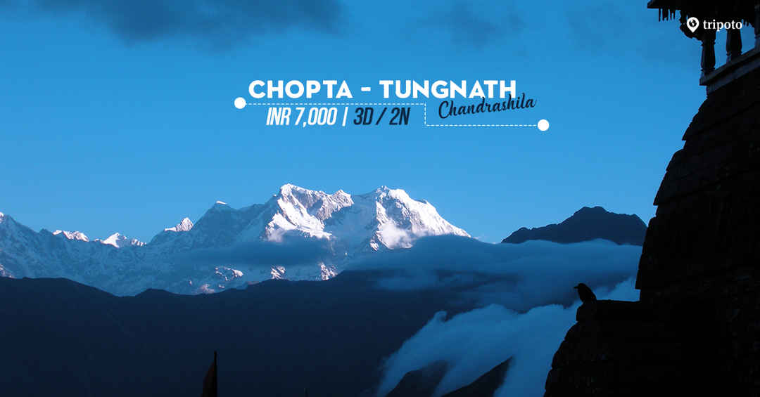Photo of Trip to Chopta