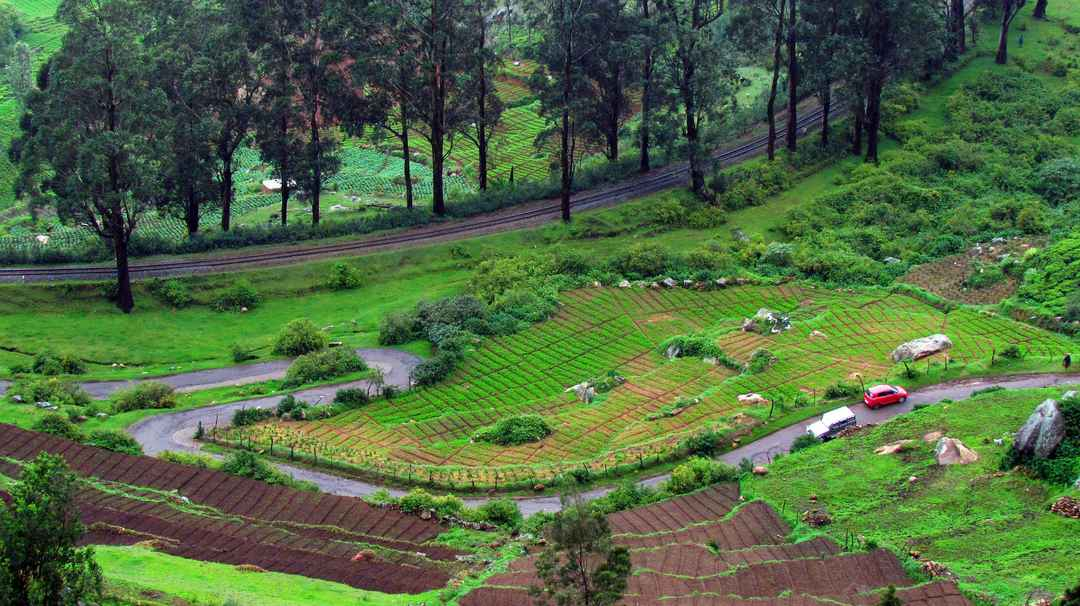 Photo of Holiday in Ooty