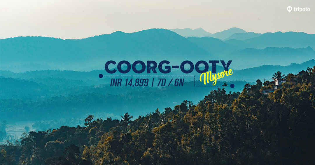 Photo of Explore Ooty, Mysore, and Coorg