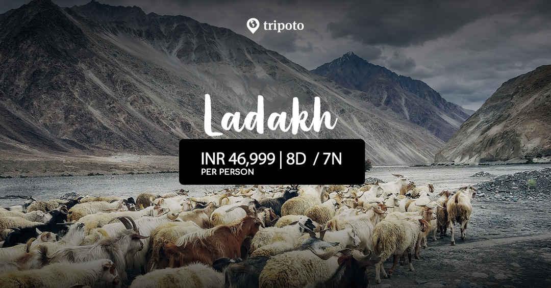 Photo of 8 Days Tour in Ladakh