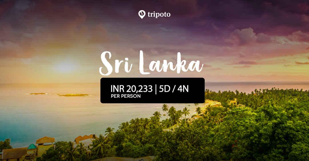 Photo of Explore Srilanka's Culture